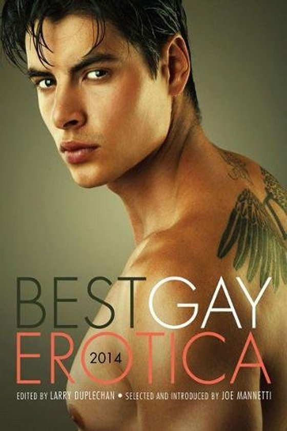 Best Gay Erotica 2014 (anthology)